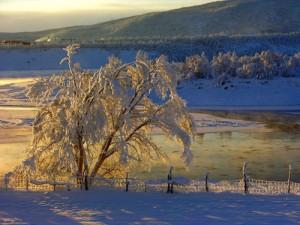 Lago Lappone