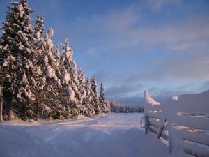 Inverno in Lapponia